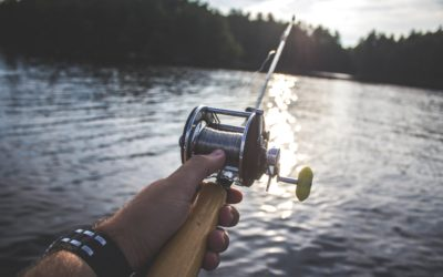 How to reel in the right RPA vendor for your business